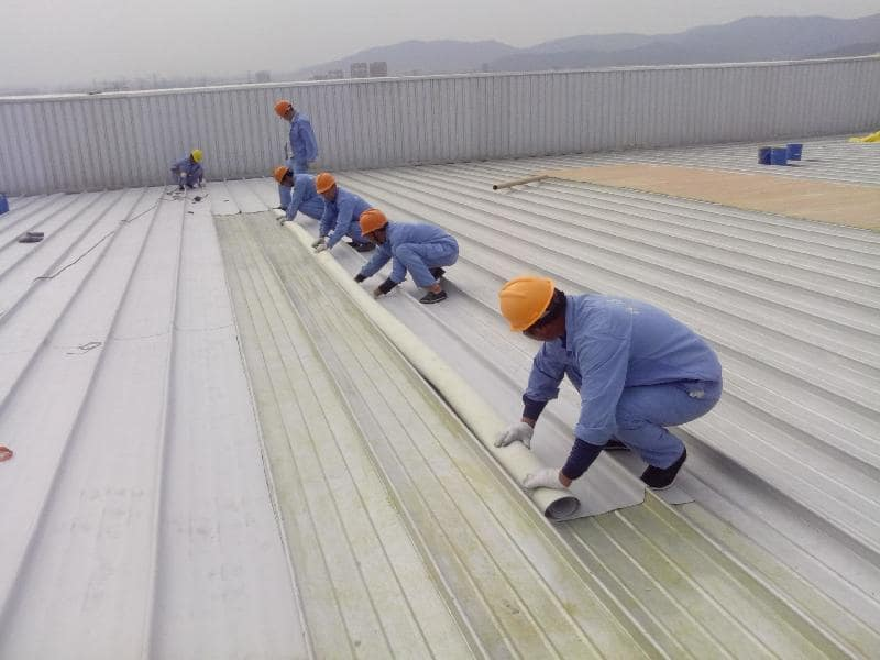 Có nên đi xuất khẩu lao động Nhật đơn hàng chống thấm hay không?