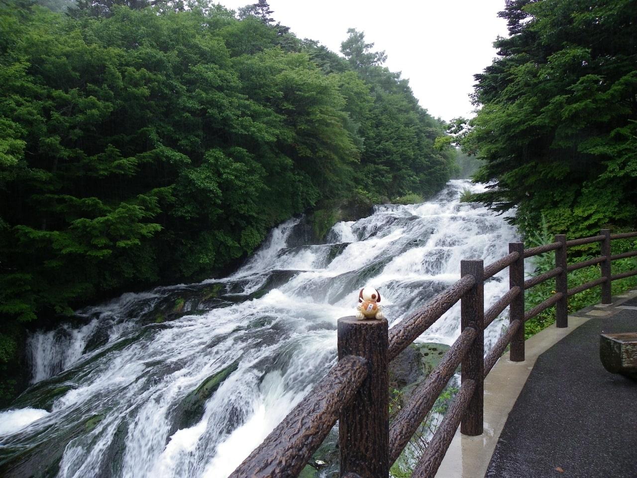 TOP đơn hàng LƯƠNG KHỦNG khi đi XKLĐ tại Tochigi, Nhật Bản
