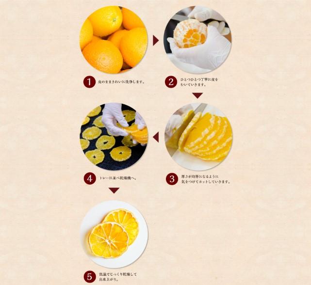 đơn hàng  sấy hoa quả 1 năm tại Nagoya