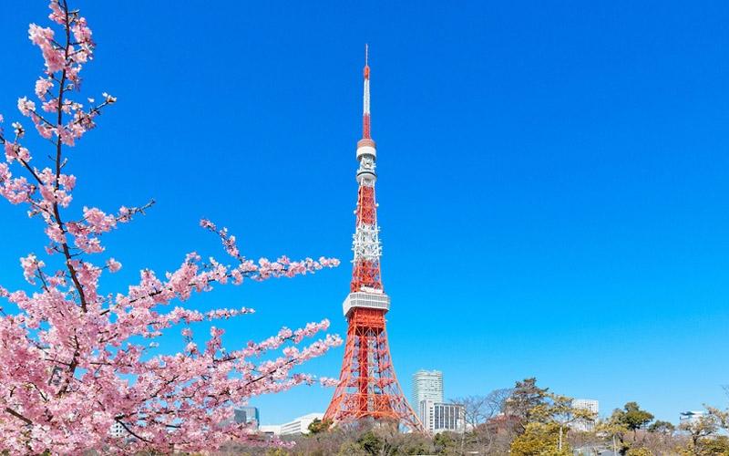 Đơn hàng visa đặc định làm vệ sinh tòa nhà tại Tokyo, Nhật Bản