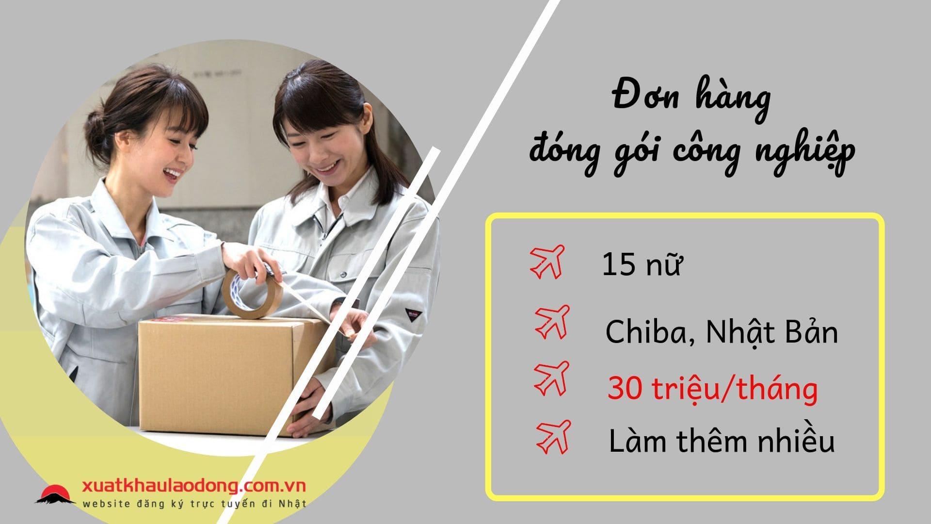 Đơn hàng đóng gói công nghiệp lương 30 triệu, phí thấp tại Chiba, Nhật Bản