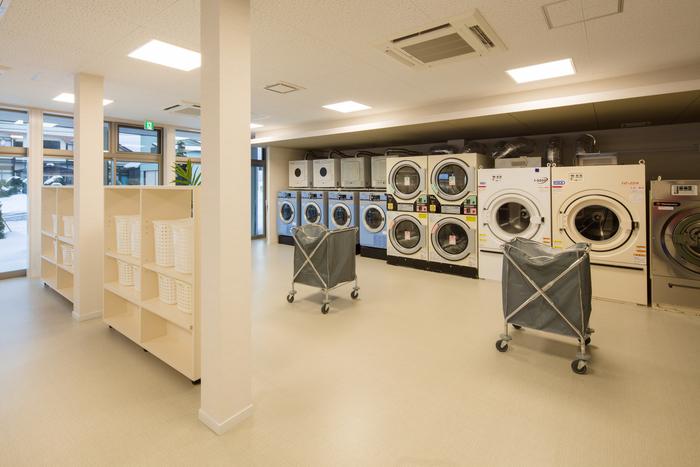 Đơn hàng giặt là Nhật Bản là làm gì?