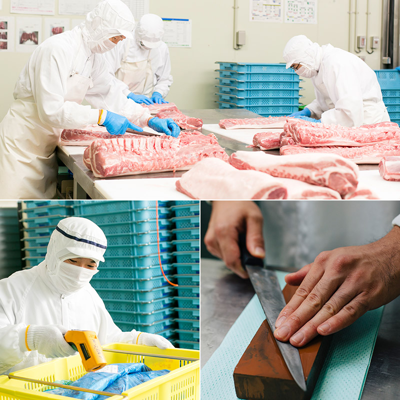 Đơn hàng chế biến xúc xích tại Fukui, Nhật Bản