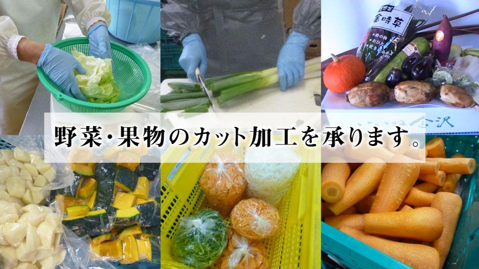 đơn hàng chế biến rau của quả tại Kanagawa, Nhật Bản