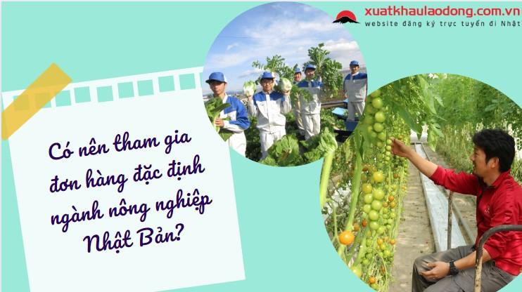 TOP 10 đơn hàng đặc định ngành nông nghiệp lương cao, dễ trúng tuyển năm 2021