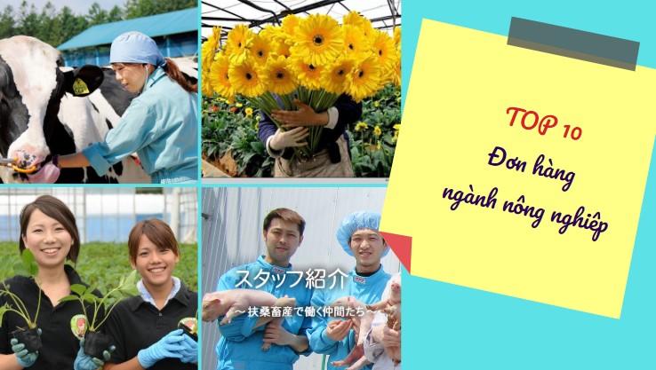 TOP đơn hàng nông nghiệp Nhật Bản nên chọn năm 2020