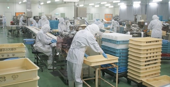 lam cơm năm xuất khẩu lao động Nhật Bản