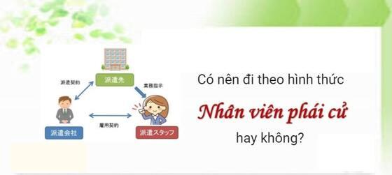 Haken là gì? Có nên đi kỹ sư Nhật Bản qua Haken không?