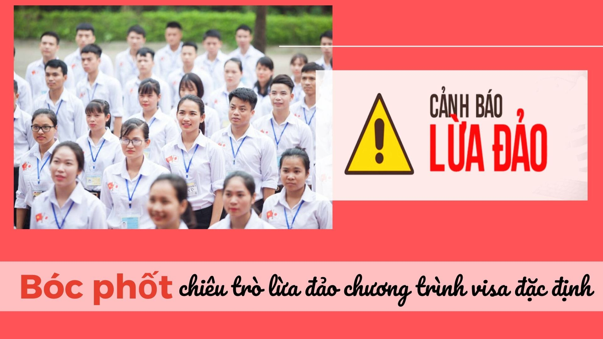Bóc phốt các hình thức LỪA ĐẢO chương trình visa kỹ năng đặc định tại Việt Nam