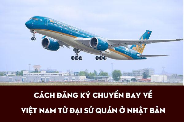 Cách đăng ký chuyến bay về Việt Nam từ đại sứ quán ở Nhật Bản