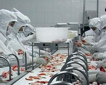 Tuyển 75 lao động nữ làm thực phẩm tạo Hiroshima tháng 12/2013