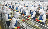 Cơ hội đặc biệt cho lao động Nữ đi xuất khẩu lao động Nhật Bản  tháng 3,4/2016